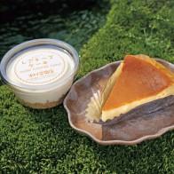 豆乳入りチーズケーキ
